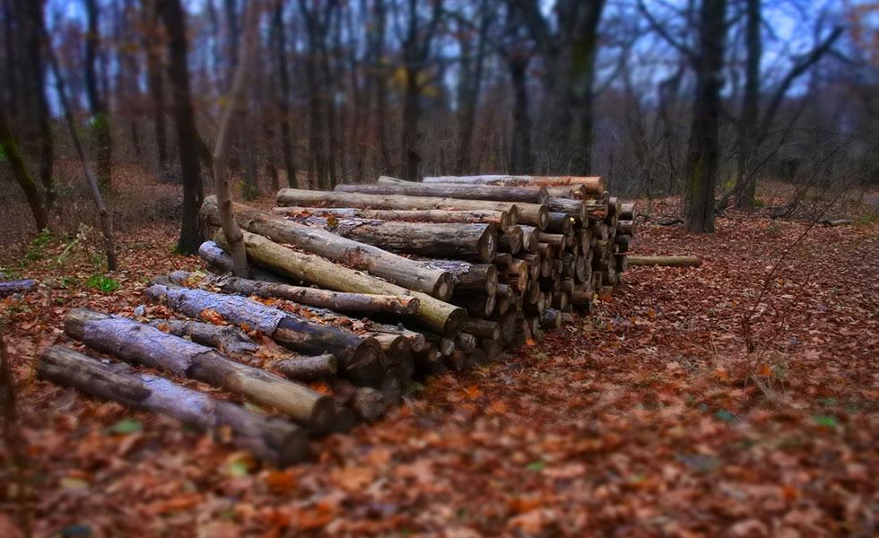 Priprema drva za ogrjev