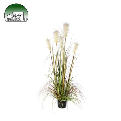 Umjetna biljka Pampas trava perjanice